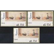 ATMs - Térmicos 2004 - E0187 - Bodegón con calabaza
