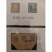 Colección Collection Franco variedades variety