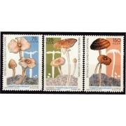 Guinea Ecuatorial 159/61 1992 -  Setas autóctonas
