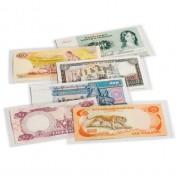 Leuchtturm  hojas para billetes de banco, BASIC, 170 x 86 mm